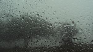 Rainy Days Galore